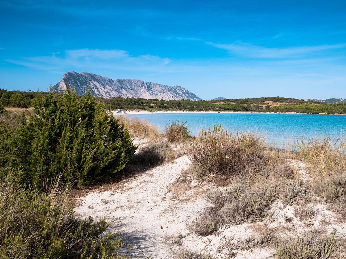 Le spiagge a sud di Olbia