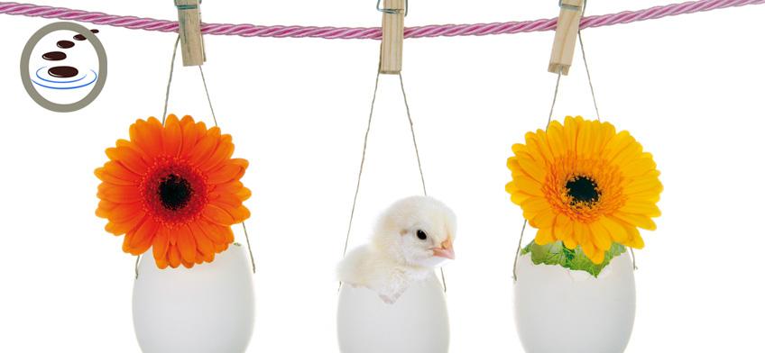 Pasqua... benessere di base!